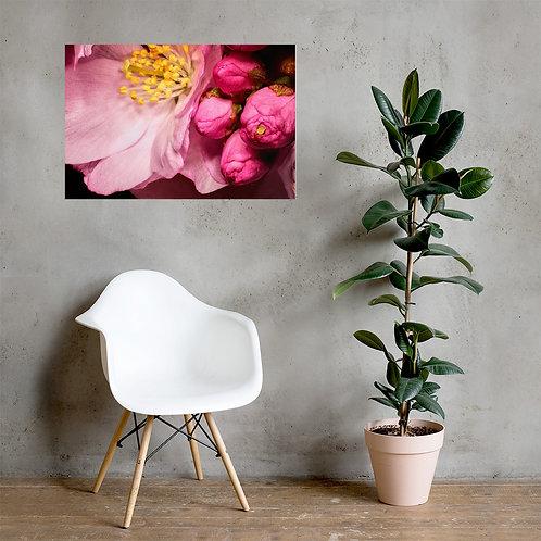 Makroaufnahme Blume (Poster)