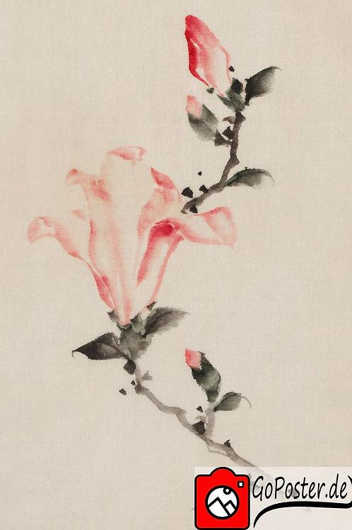 Japanische Zeichnung einer Blume