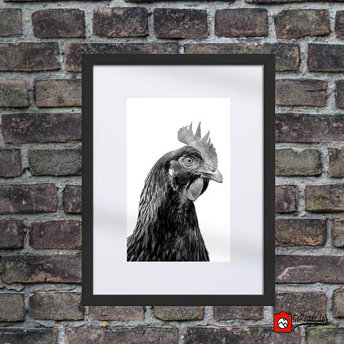Huhn im Passepartout