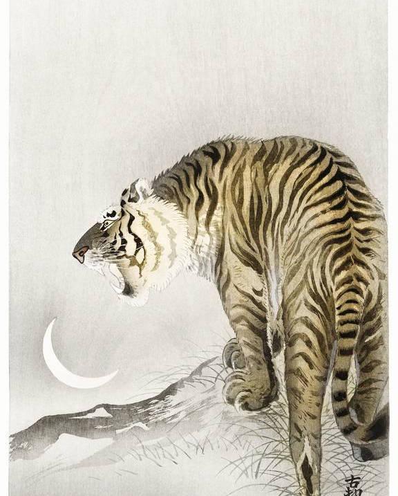 Japanische Zeichnung eines Tiger mit Rahmen