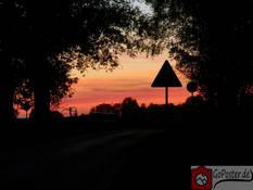 Rosaroter Sonnenuntergang mit Relief von Bäumen und Schild (Poster)