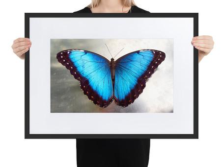 Dein Wohnzimmer mit Bildern gestalten