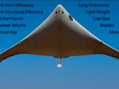 Eagle Ray UAS Scans for Poachers