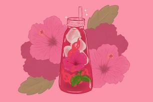 Hibiscus Iced Ghost-tea