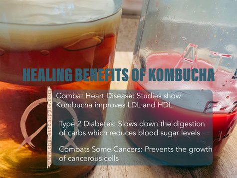 The Healing Benefits of Kombucha