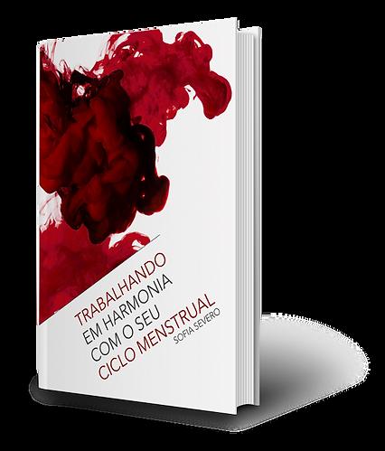 mockup-trabalho-ciclo-menstrual-ebook2.p