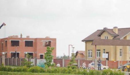 Эксперты назвали самые популярные стройматериалы для загородных домов