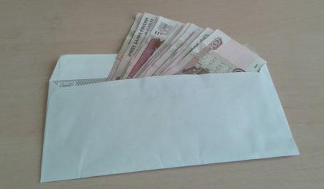 В Совете Федерации назвали долю граждан с «серой» зарплатой