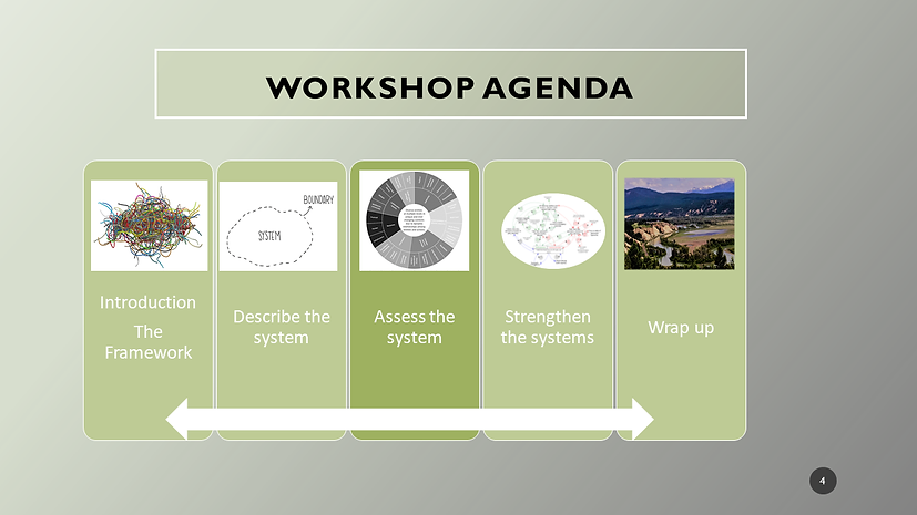27 Oct workshop agenda ppp to png.png