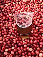 Cranberry Beer