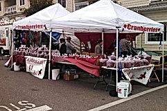 Northwoods Festivals Cranberries