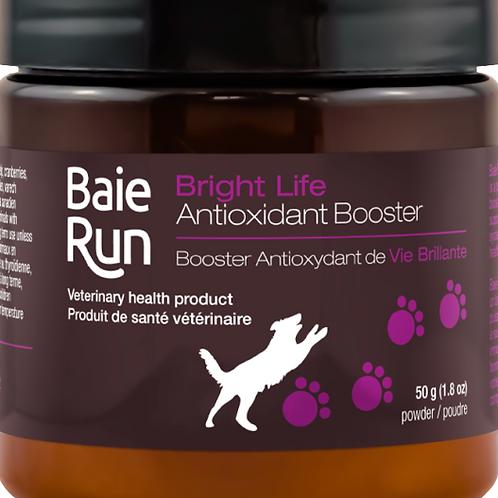 Baie Run Dog Bright Life Antioxidant Booster