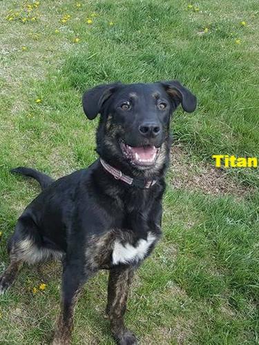 Titan aka Ti Guy