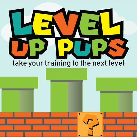 LEVEL UP PUPS