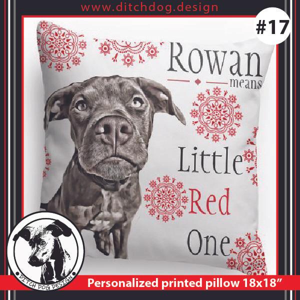 Ditch Dog Pillow