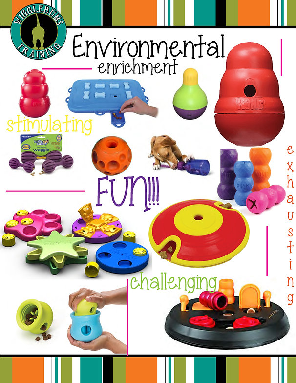 Environmental Enrichment package_Page_1.