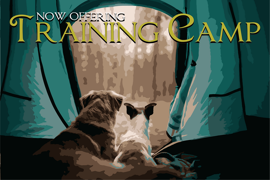 Camping dogs.png