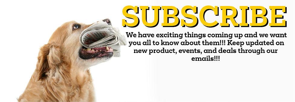 subscribe-01.jpg