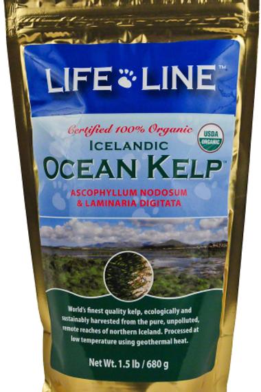 Lifeline Organic Ocean Kelp