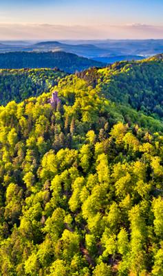 montagne Alsace.jpg