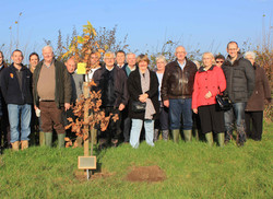 2014 Tree planting