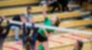 HS Volleyball color.jpg