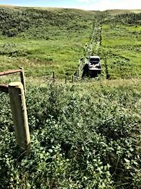 Necan Fence Rolling Hills2.jpg