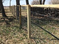Paige Wire (farm fence)