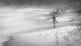 Surf Siesta