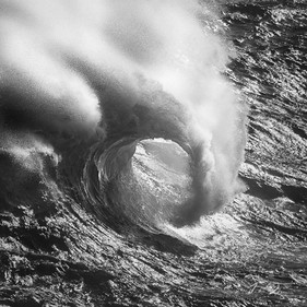 Curl In Black And White