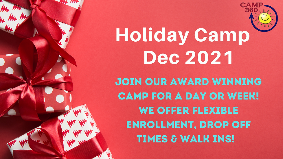 Holiday Camp website.png