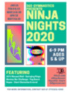 Ninja Flyer.jpg
