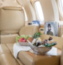 Cat Aviation VIP Cabininterior