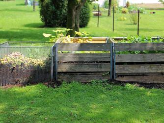 Bioabfall richtig sammeln und bereitstellen.