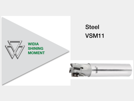 Shining Moment: VSM11 in Steel