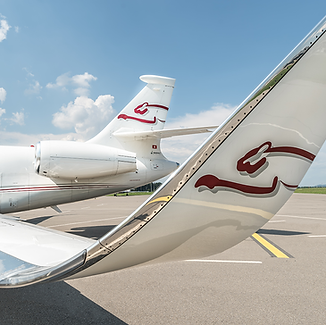 Cat Aviation Wing and Tail of Falcon 2000LX