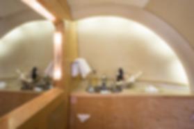 Cat Aviation Hawker VHV Bathroom