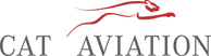 Cat Aviation Logo