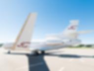 Cat Aviation Falcon 2000LX