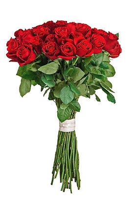 7 rote Rosen