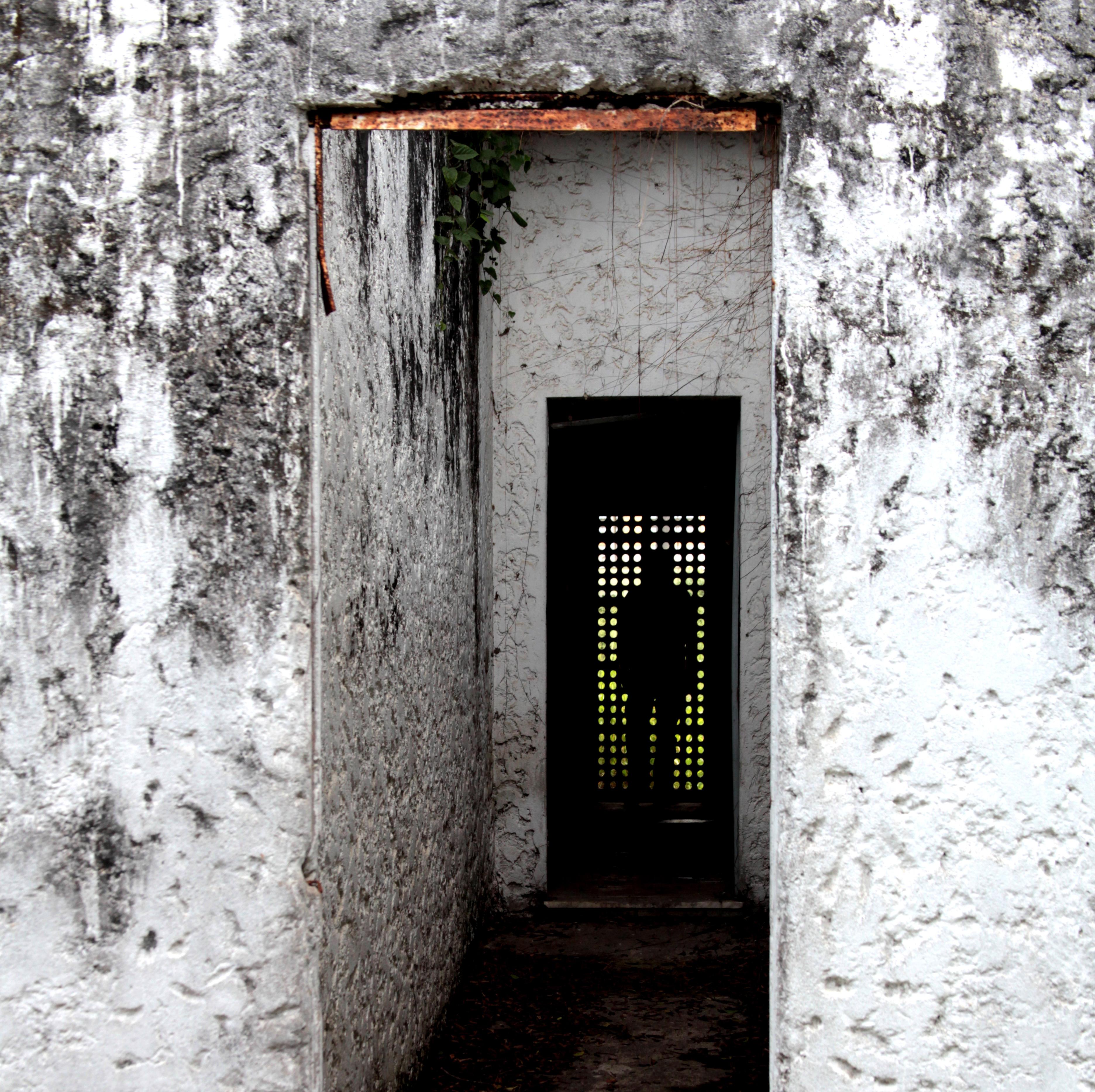 Colonia Juliano Moreira
