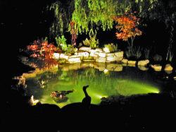Waterfalls pond Southwater