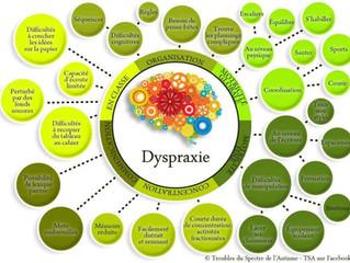 Infographies sur les troubles DYS