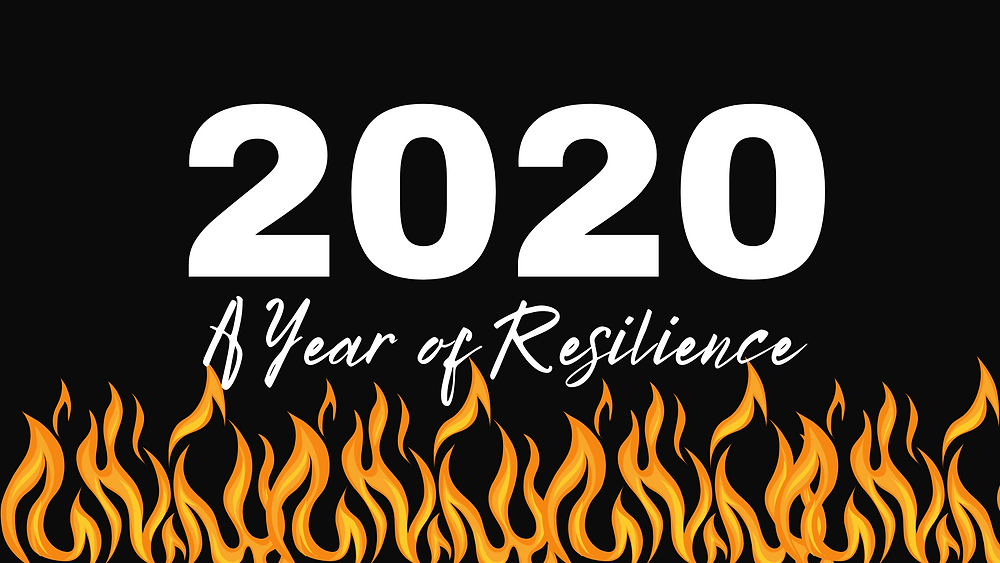 2020 a year of resilience