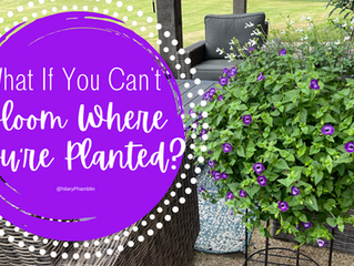 What If You Can't Bloom Where You're Planted?