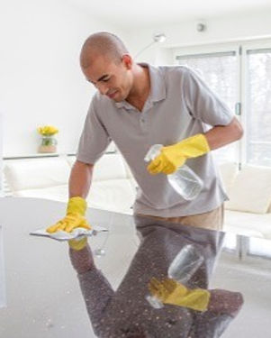 house_cleaning_gimme_the_dirt_edited.jpg