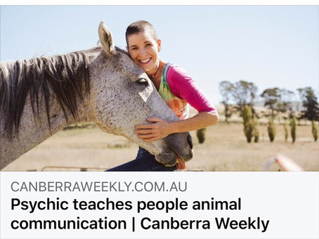Canberra Weekly Article