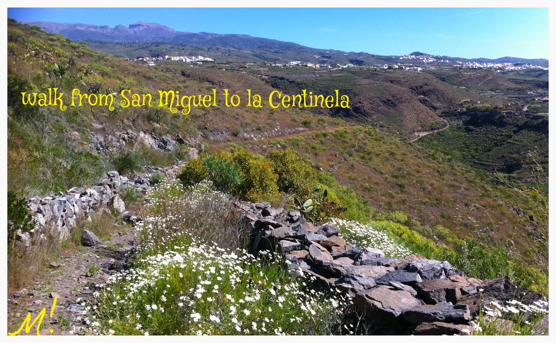 San Miguel - La Centinela