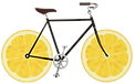 Fresh-Lemon-Communication-Logo.png