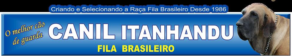 FILA BRASILEIRO